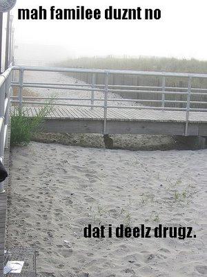 Catdrugs