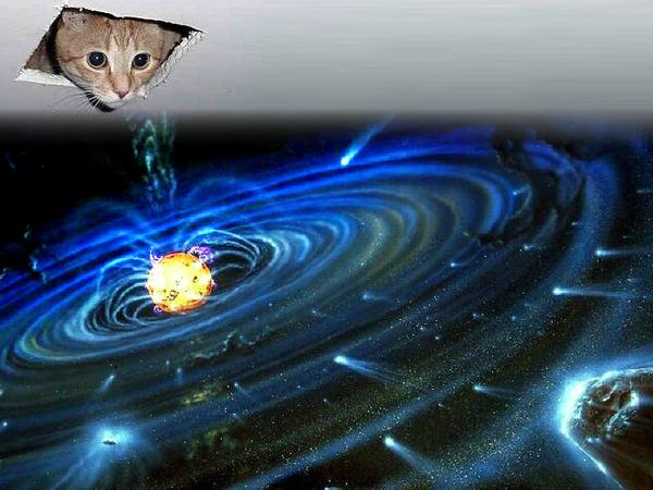 Cieling_cat_creates